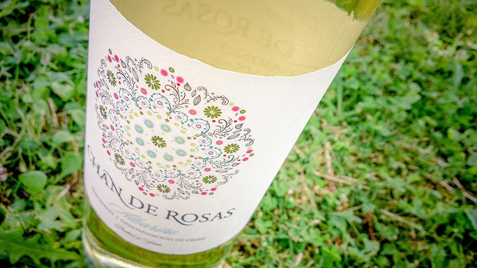 Celebrando con Chan de Rosas
